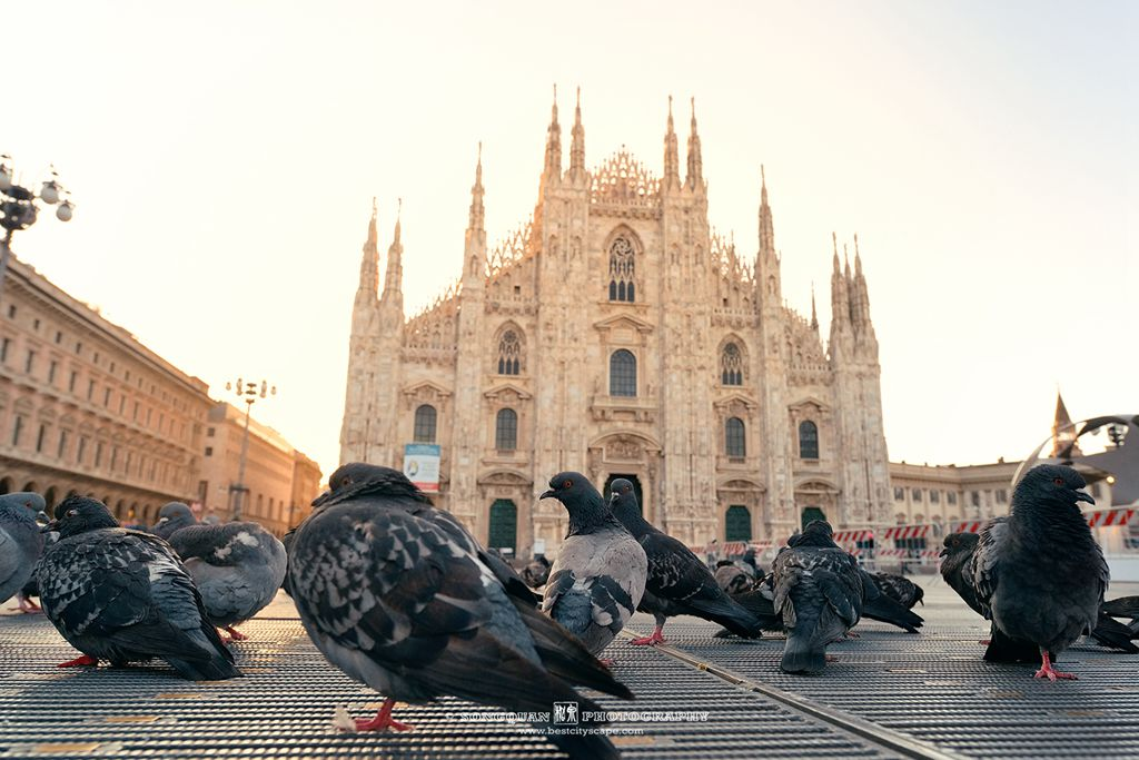Milan Duomo Plaza with pigeons. Preview photo from my Italy trip.
